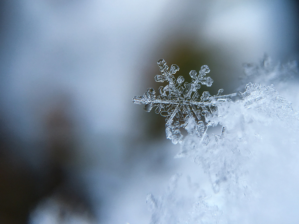 Preparing your commercial property for winter